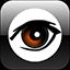 программа камер видеонаблюдения ПК